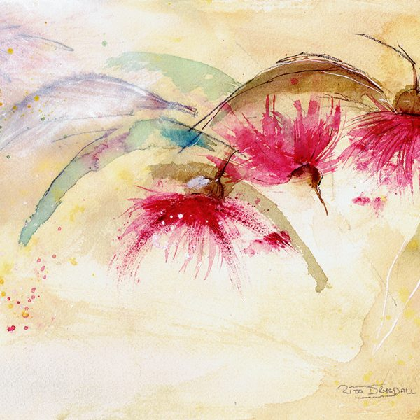 Gum Tree Flowers Watercolour